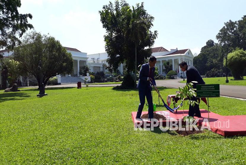 Indonesian President Joko Widodo and Chinese PM Li Keqiang plant a sapling of camphor, or