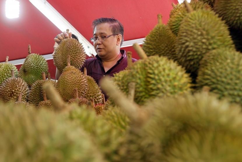 Pria memilih durian. Foto: Republika/EPA