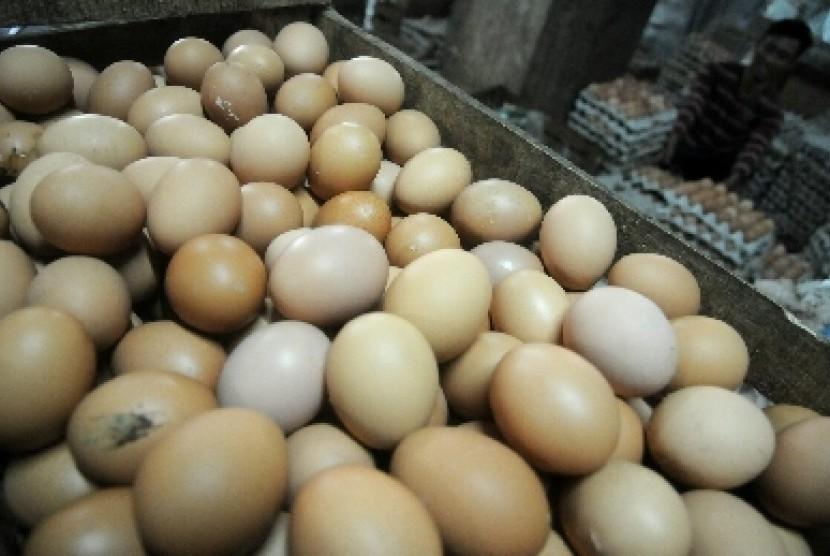 Rak telur ayam di salah satu distributor di Jakarta, Senin (24/11).
