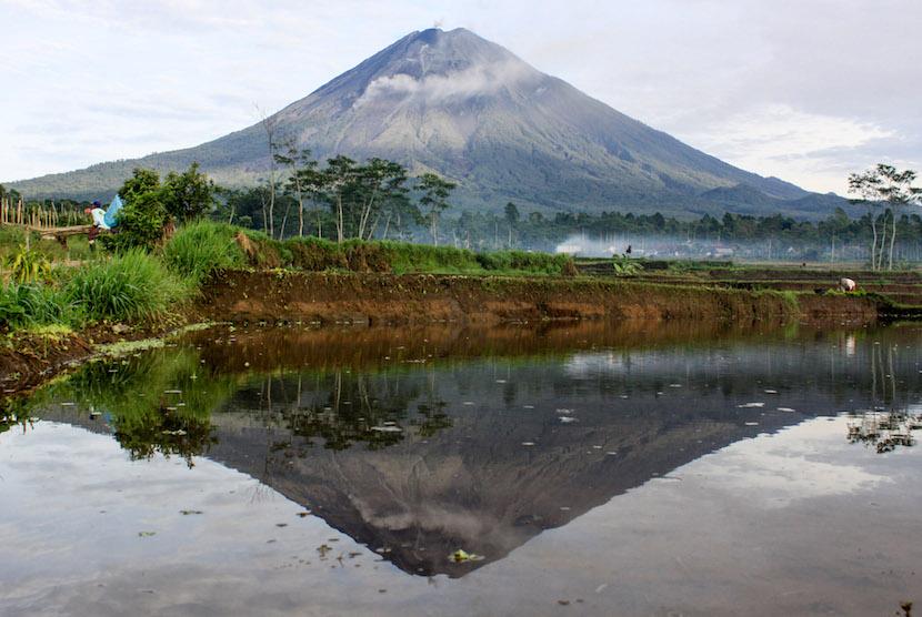 Download Gunung Semeru Meletus Pada Tahun Background