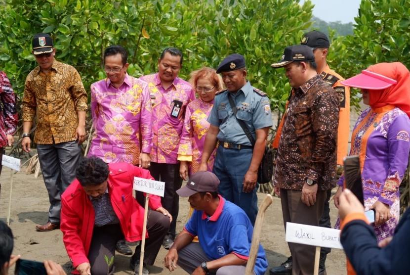 Rektor UIN Suka, Yudian Wahyudi (berbaju merah) menanam pohon mangrove.