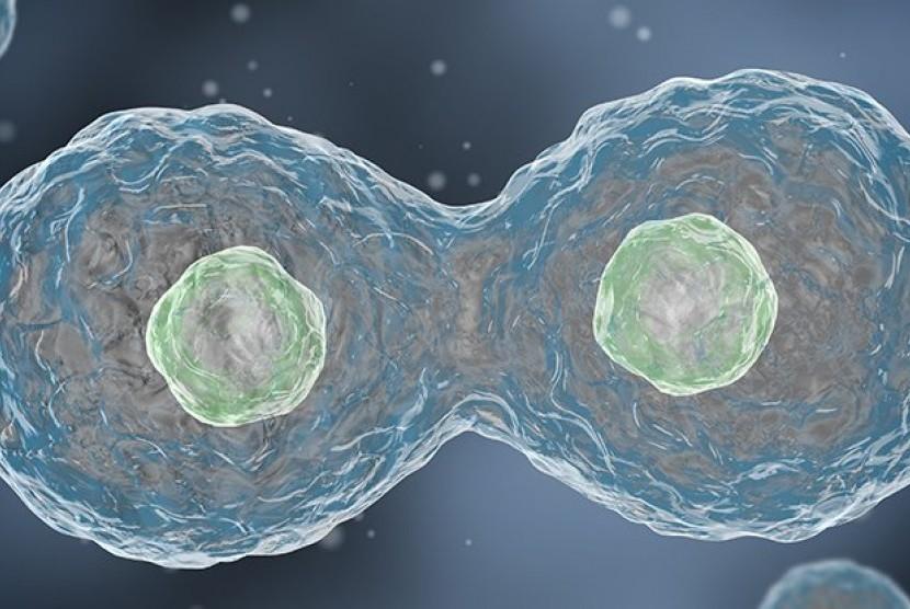 Replika DNA. Ilustrasi