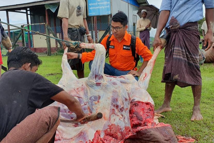Rumah Zakat menyalurkan daging kurban untuk Muslim Rohingya.