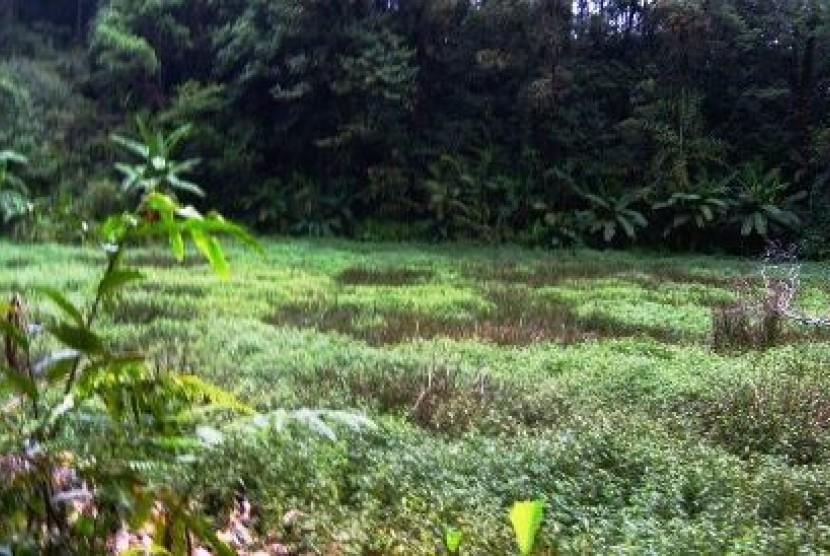 Salah satu taman Kehati Kementrian Lingkungan Hidup di