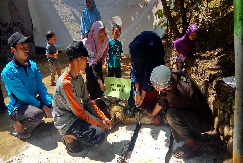 Santri SMP-SMA Ar-Rohmah Putri Pesantren Hidayatullah Malang mencoba melakukan sembelih hewan kurban sendiri
