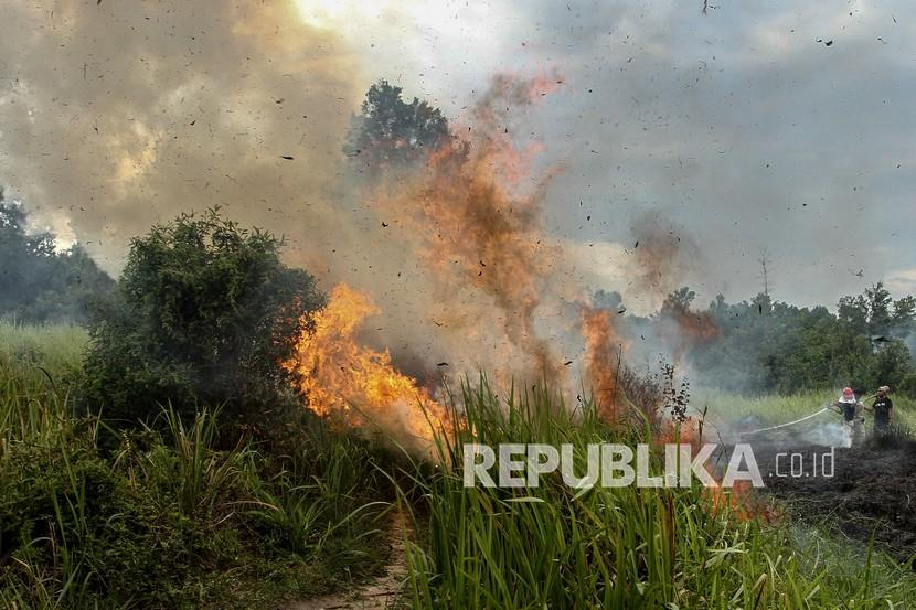 Petugas gabungan berusaha memadamkan api yang membakar lahan ketika terjadi kebakaran lahan di Kota Pekanbaru, Riau, Jumat (2/4/2021).  Menurut Airlangga, Indonesia juga telah berhasil menurunkan 91,84 persen kebakaran lahan dibandingkan tahun sebelumnya.