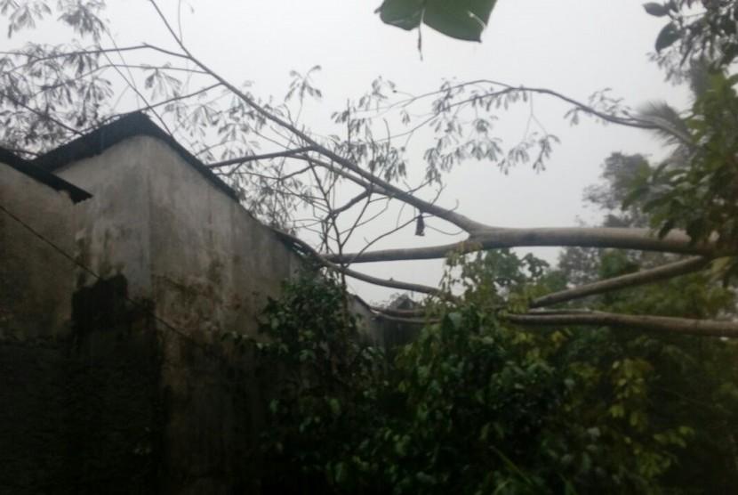 Sebuah rumah tertimpa pohon tumbang di Desa Hargobinangun, Kecamatan Pakem, Kabupaten Sleman, Rabu (10/1)