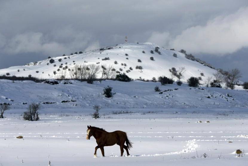 Seekor kuda berjalan di salju di wilayah Golan yang dikuasai Israel.
