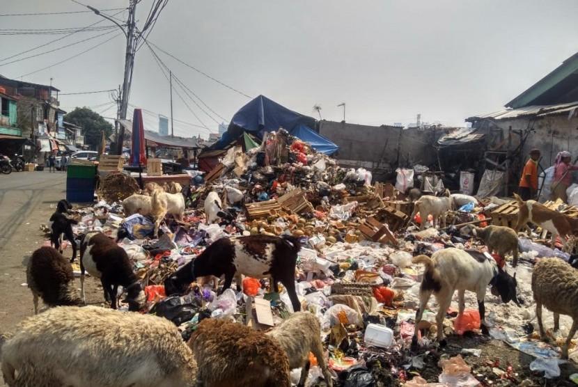 Sejumlah kambing memakan sampah - sampah di tempat pembuangan sampah di Jalan Sabeni. Para pedagang di pusat pasar kambing ini terpaksa membiarkan hewan ternaknya memakan sampah karena sulitnya mencari rumput di Ibu Kota, Rabu (17/7).