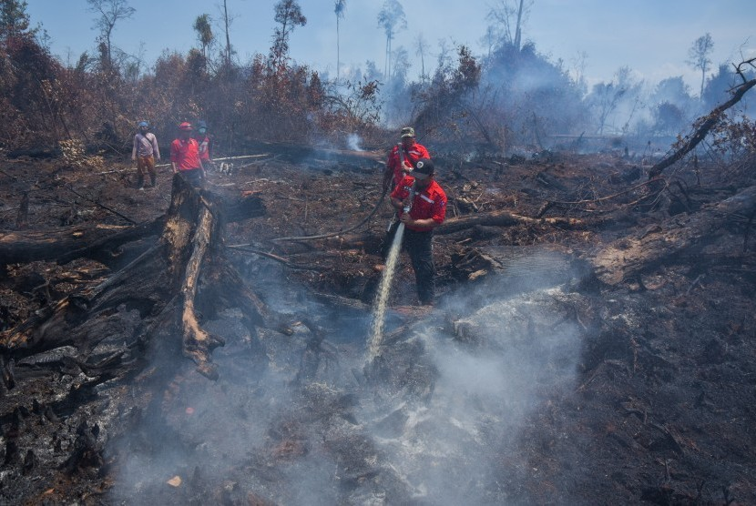 Sejumlah personel pemadam kebakaran melakukan proses pemadaman kebakaran hutan. (ilustrasi)