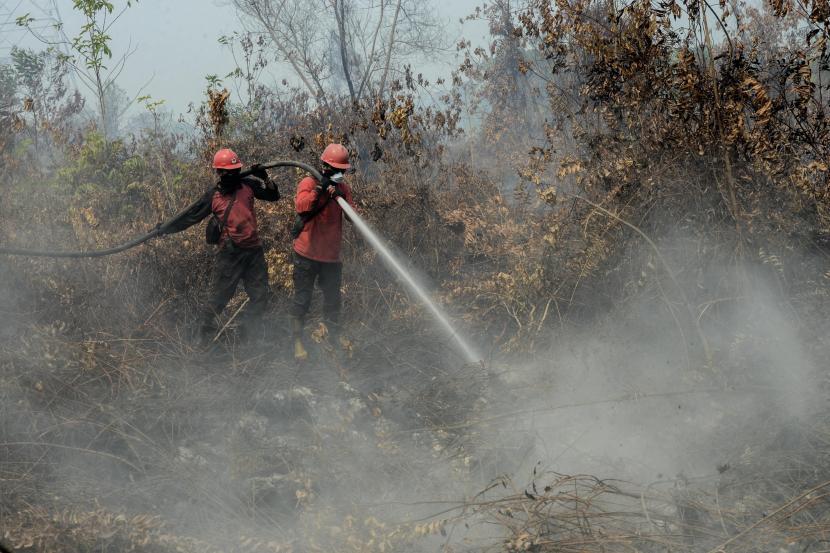 Sejumlah petugas Manggala Agni bersama anggota TNI berusaha melakukan pendinginan saat kebakaran hutan di Desa Rimbo Panjang, Kabupaten Kampar, Riau.