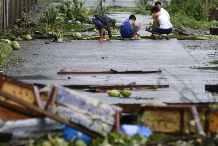 Sejumlah warga Kota Tuguegarao, Filipina, memunguti kelapa setelah hantaman Topa Mangkhut, Sabtu (15/9).