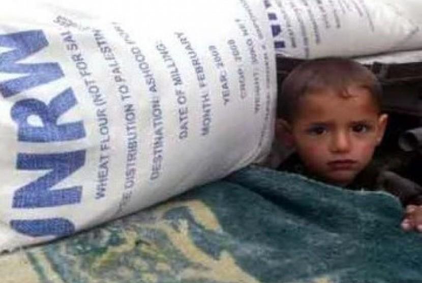 Seorang anak kecil berdiri di balik timbunan karung bantuan pangan UNRWA. (ilustrasi)