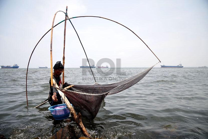 Seorang nelayan mengangkat jaring udang rebon di wilayah pesisir pantai Jakarta Utara, Selasa (8/10). (Republika/Prayogi)
