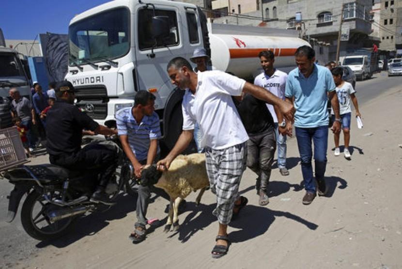 Seorang pengungsi Palestina di Kamp Pengungsian Shati, Kota Gaza, tengah mengambil kambing bantuan Zakat Foundation of Amerika. Lembaga filantropi tersebut menyalurkan bantuan hewan kurban melalui lembaga urusan Pengungsian PBB, UNRWA di Gaza, Palestina.