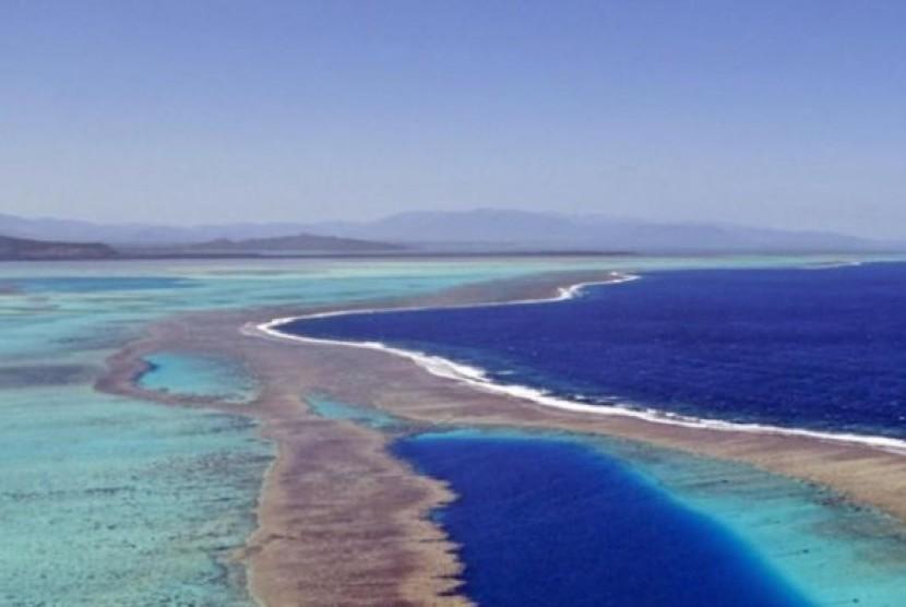 Seorang peselancar payung Australia jatuh ke laut dan digigit hiu di Kaledonia Baru.