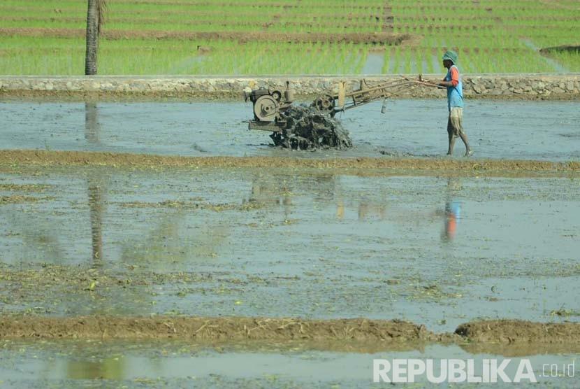 Seorang petani membajak sawah dengan menggunakan traktor di Kabupaten Sumedang, Jawa Barat. (Republika/Edi Yusuf)