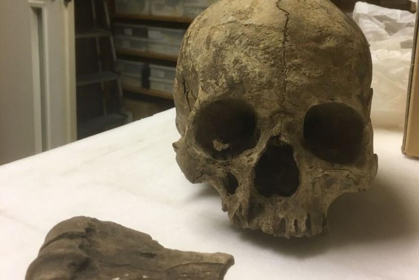Seseorang menemukan kembali tengkorak paling tua di Inggris bernama Greta..