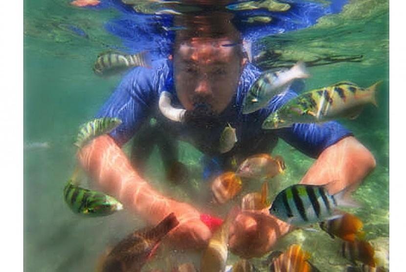 Snorkeling di Taman Laut Bunaken sambil bercengkrama dengan ikan-ikan cantik.