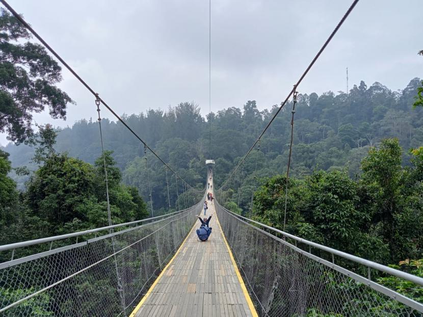 Jembatan Gantung Terpanjang akan Dibangun di Megamendung (ilustrasi).