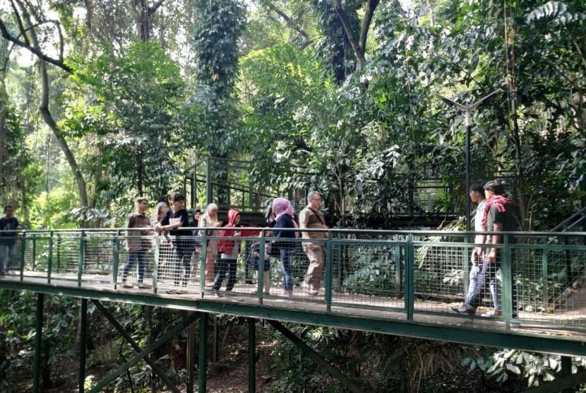 Orang-orang di taman kota (ilustrasi).