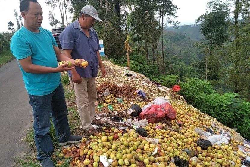 Susilo, pedagang buah apel Malang membuang apel busuk ke pinggir jalan.