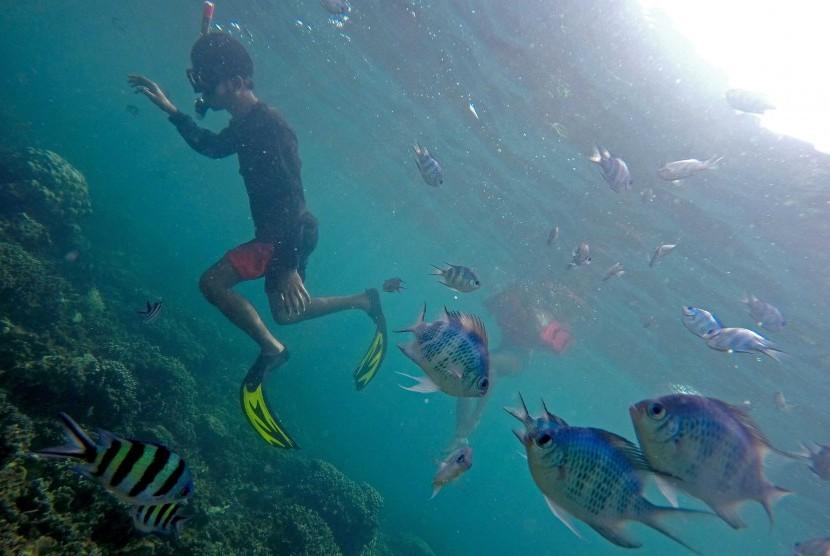 Taman Bawah Laut Pahawang. Pulau Pahawang merupakan satu dari beberapa pulau kecil di Teluk Lampung.