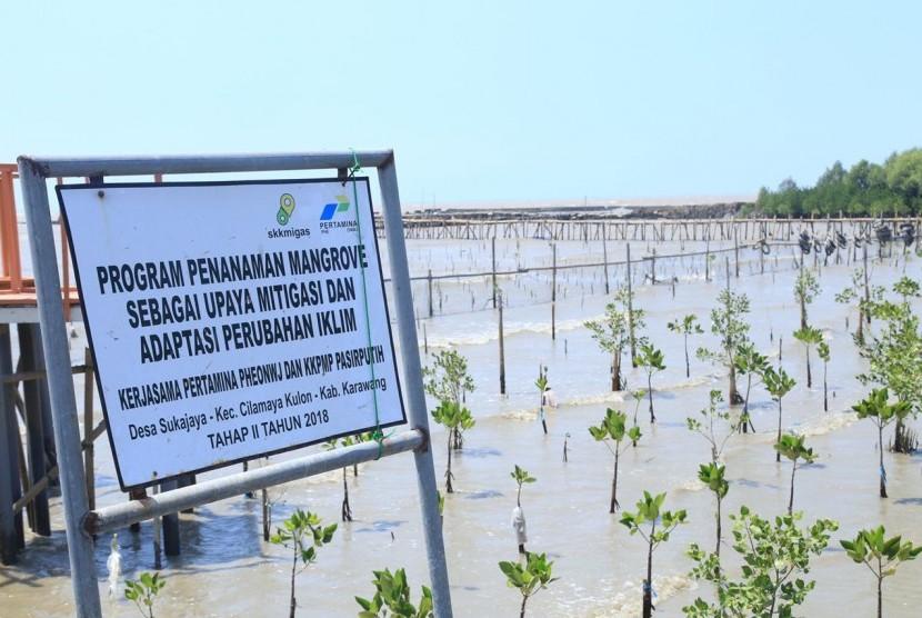 Taman Mangroove di Pantai Pasir Putih, Karawang, Jawa Barat, Selasa (13/8). Taman Mangroove ini salah satu program unggulan Corporate Social Responsibility (CSR) Pertamina Hulu Energi Offshore North West Java (PHE ONWJ) diwilayah pesisir Subang dan Karawang.