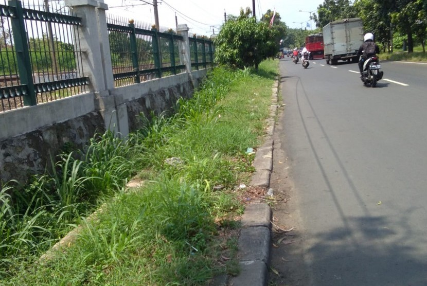 Tanaman Liar Meranggas di Trotoar Jalan I Gusti Ngurah Rai, Cakung,  Jakarta Timur,  Kamis (25/4).