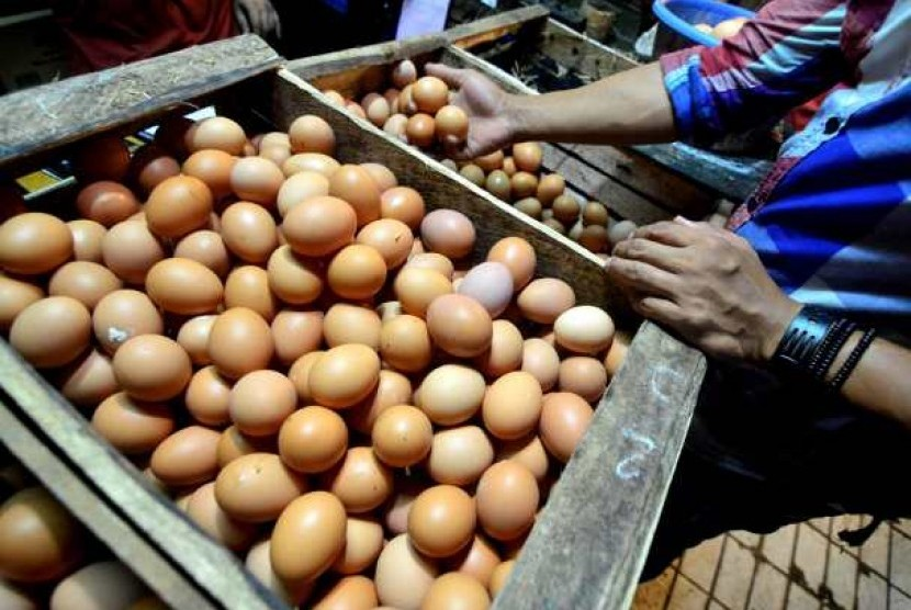 Telur ayam negeri (Ilustrasi)