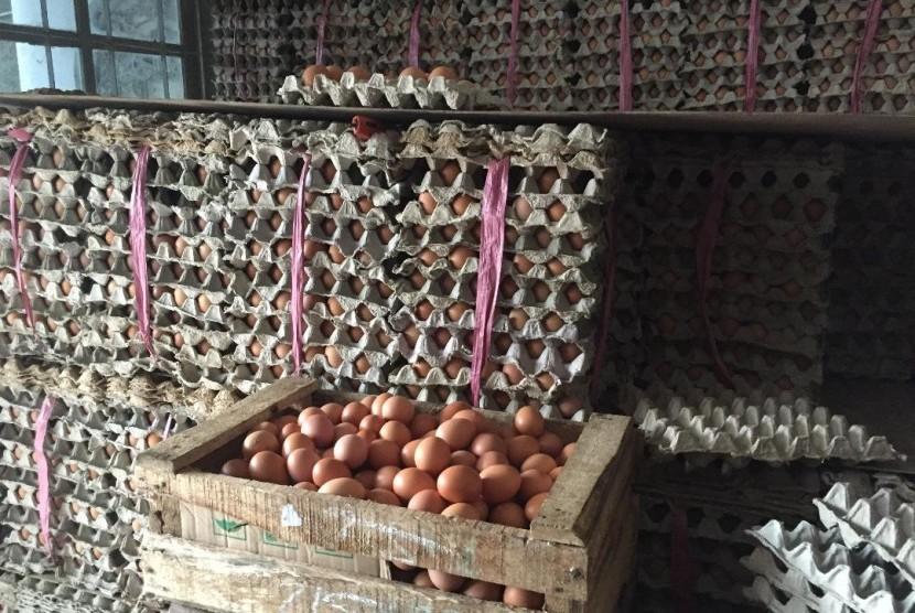 Telur ayam yang harganya masih tinggi