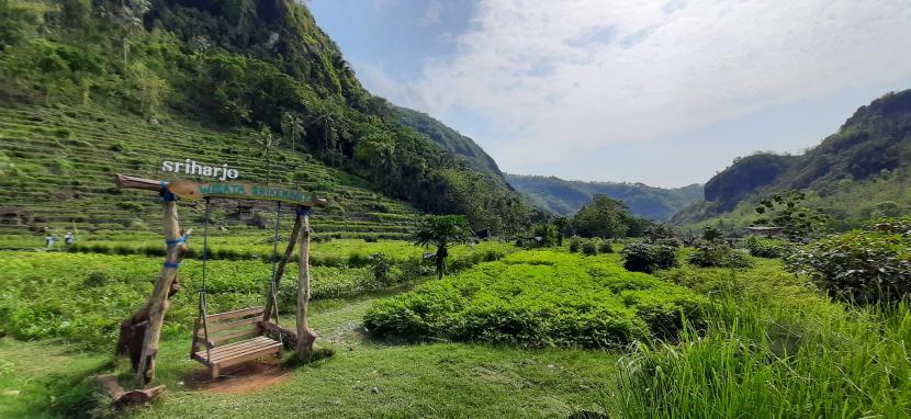 Terasering Sriharjo merupakan salah satu wisata alam di Lembah Sungai Oya di Selopamioro, Bantul, Yogyakarta