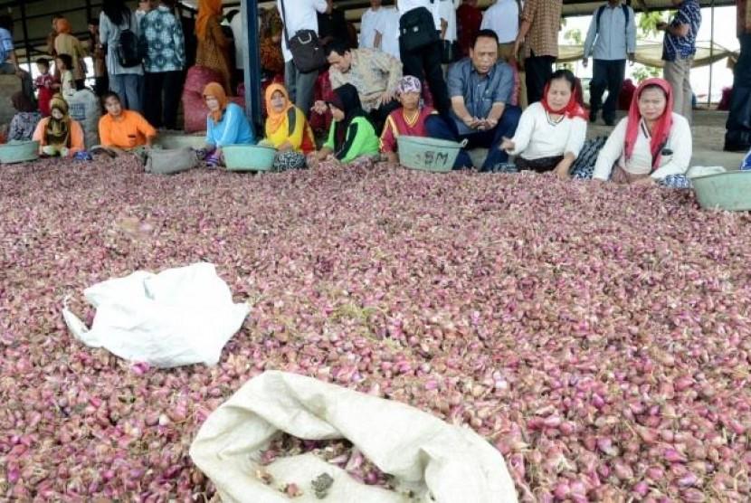 Tim Komisi IV DPR RI melakukan pertemuan dengan sejumlah petani bawang di Brebes.