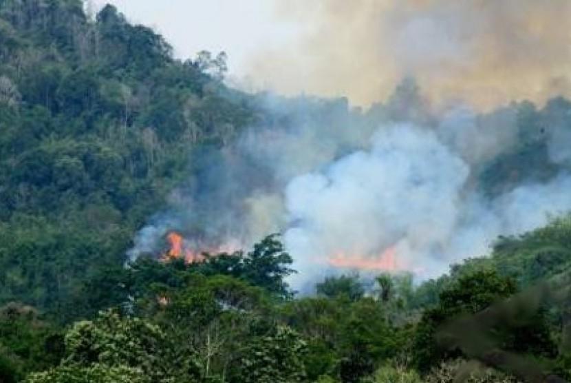 Titik api akibat kebakaran hutan.