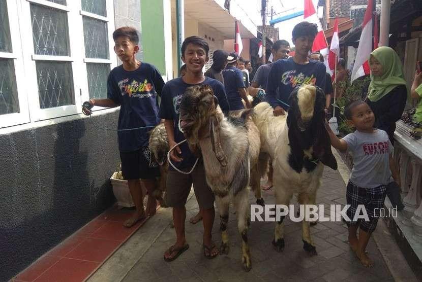 Tradisi Arak-arakan hewan kurban di Kota Malang, Rabu (22/8).