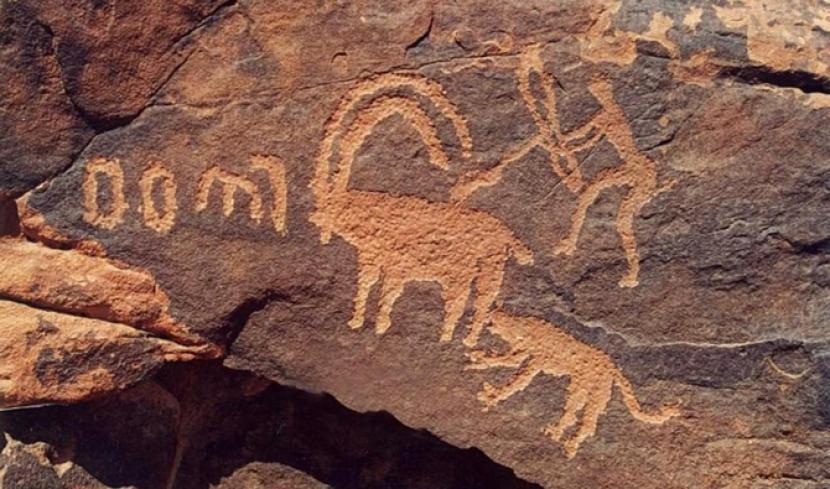 Sejarah Arab Saudi Terukir di BatuSejak Ribuan Tahun Lalu. Ukiran hewan berusia ratusan tahun di situs batu Arab Saudi.