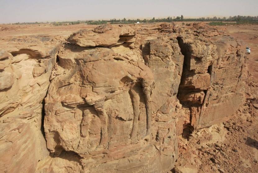 Ukiran unta ditemukan di Arab Saudi.