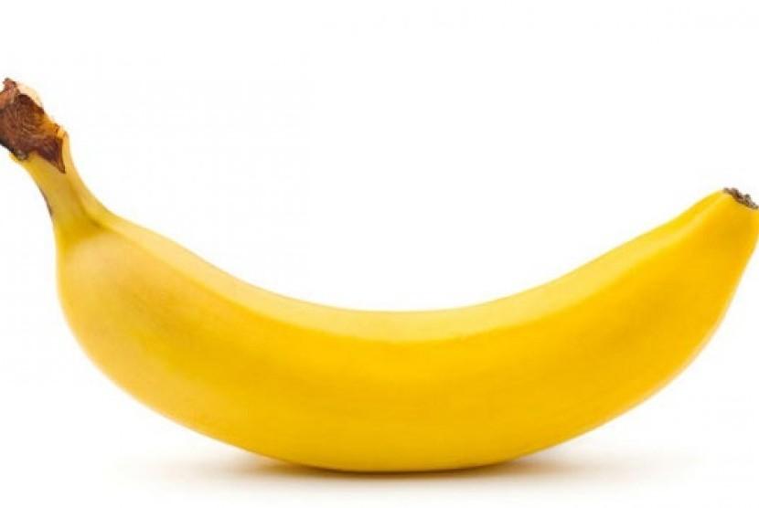 penis pria (ilustrasi).