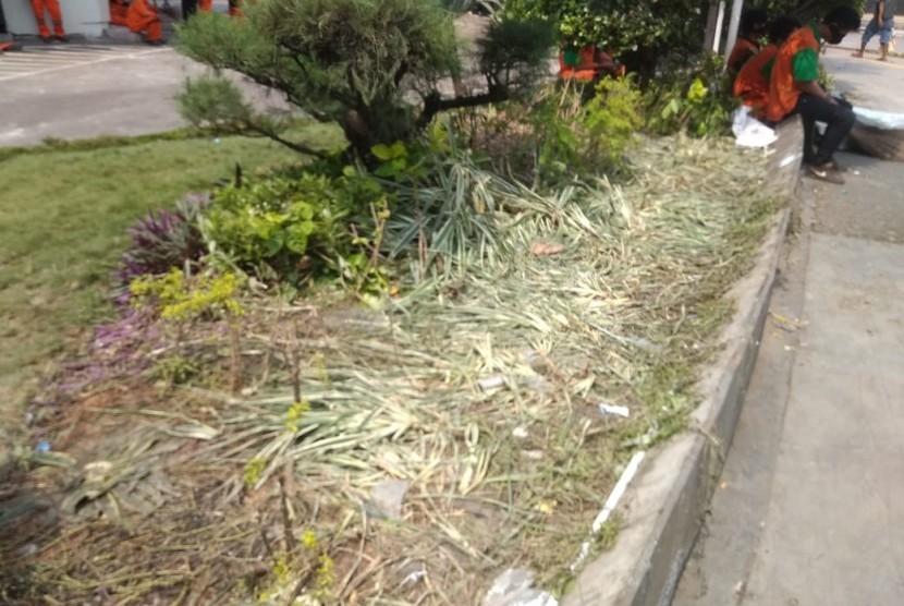 Usai demo yang dilakukan di depan Kantor Badan Pengawas Pemilu (Bawaslu), di Jalan MH Thamrin Jakarta Pusat, pada Rabu (22/5), sejumlah tanaman hias mengalami kerusakan akibat terinjak dan diduduki pendemo.