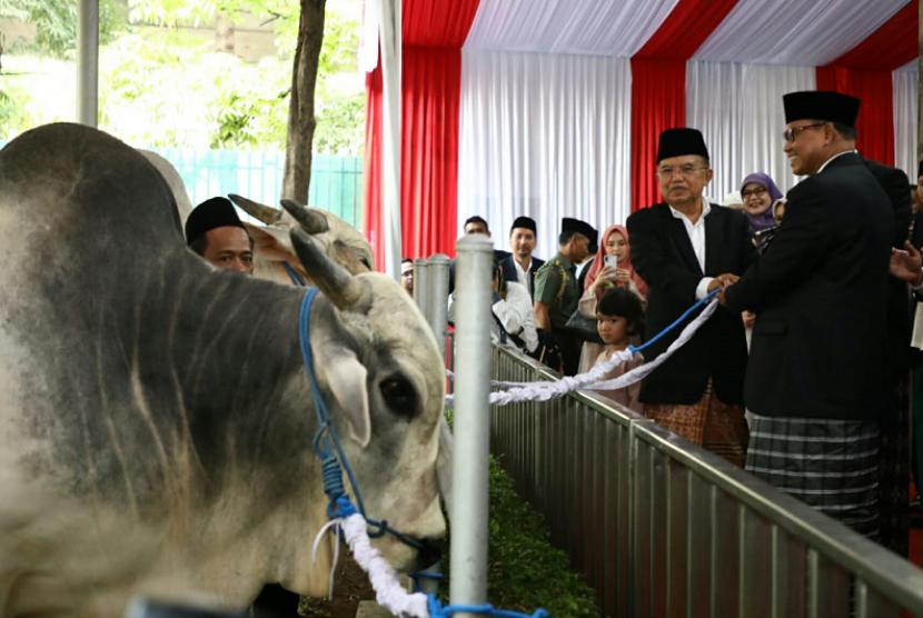 Wakil Presiden Jusuf Kalla saat menyerahkan secara simbolis hewan kurban di Masjid Istiqlal, Jakarta, Rabu (22/8).