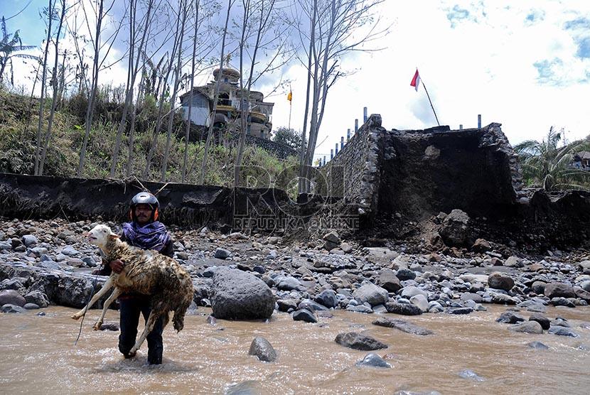 Warga mengevakuasi hewan ternaknya dari dusun Klangon yang terputus akses jalannya akibat lahar dingin Gunung Kelud yang terputus akses jalannya akibat lahar dingin Gunung Kelud di Dusun Klangon, Malang, Jawa Timur, Kamis (20/2).