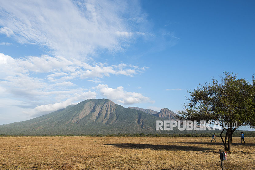 Wisatawan melihat gunung Baluran di padang sabana Bekol, Taman Nasional Baluran, Situbondo, Jawa Timur, Jumat (22/6).