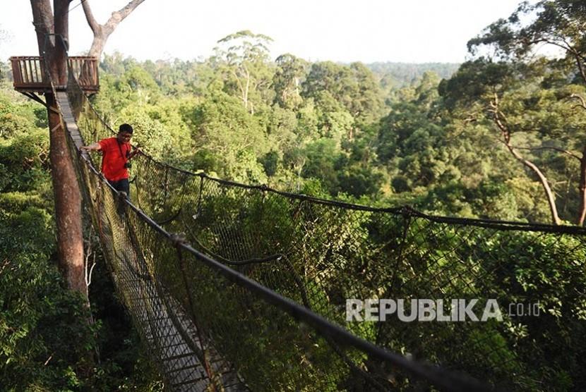 Wisatawan melintasi Canopy Bridge, hutan konservasi dan wisata alam Bukit Bangkirai di kawasan ibu kota negara baru, Kecamatan Samboja, Kutai Kartanegara, Kalimantan Timur.