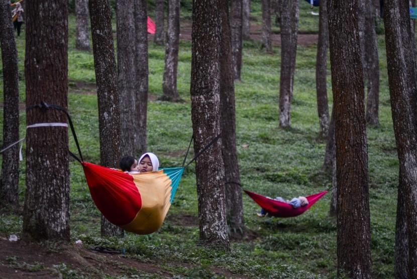 Wisatawan menggunakan hammock menikmati pemandangan hutan pinus di Wisata Alam Batu Kuda, Kabupaten Bandung, Jawa Barat, Selasa (5/2/2019).