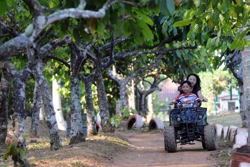 Wisatawan mengitari perkebunan kopi dengan menggunakan kendaraan ATV di Agrowisata Perkebunan Kopi Banaran, Bawen, Kabupaten Semarang, Jawa Tengah, Kamis (23/8). (Aditya Pradana Putra/Republika)
