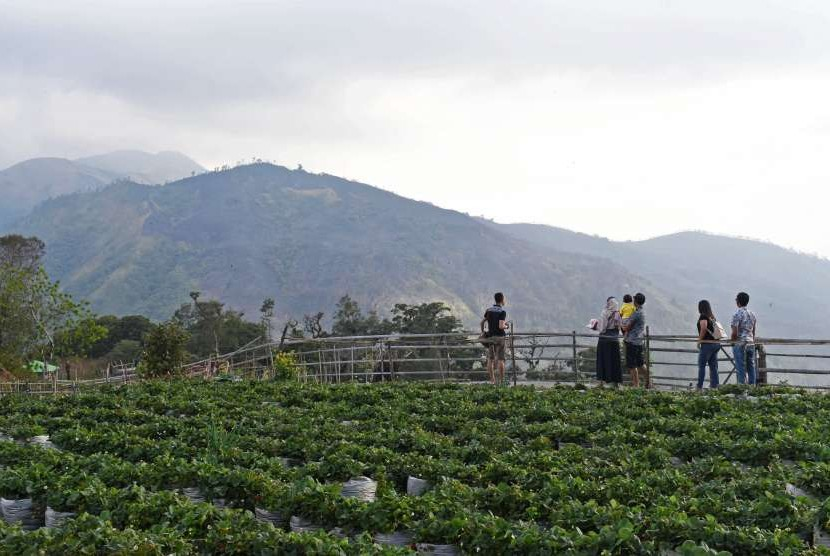 Pendakian Gunung Lawu Jalur Cemoro Sewu Ditutup Republika Online