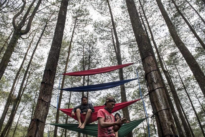 [ilustrasi] Wisatawan menikmati suasana dan pemandangan hutan pinus pal 16, Cikole, Lembang, Kabupaten Bandung Barat, Jawa Barat, Ahad (5/11).