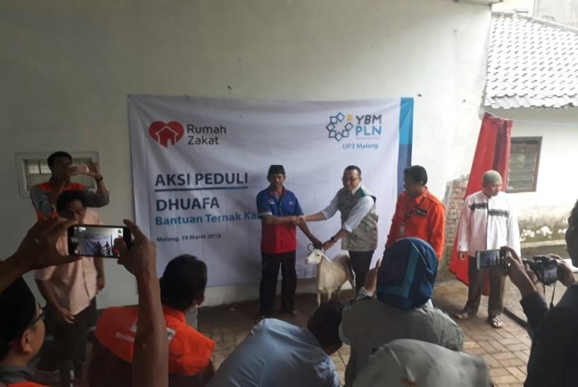 YBM PLN memberi bantuan ternak melalui program Aksi Peduli Dhuafa.