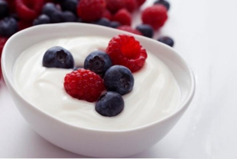 Yoghurt, camilan sehat dan menyegarkan (ilustrasi)