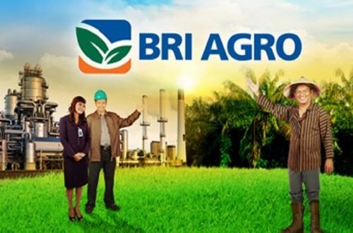 BRI Agro Salurkan Pinjaman ke Modal Rakyat Rp 50 Miliar